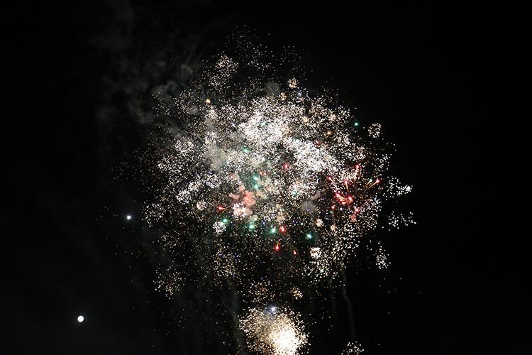 神秘环节公布璀璨的烟花绽放在天空